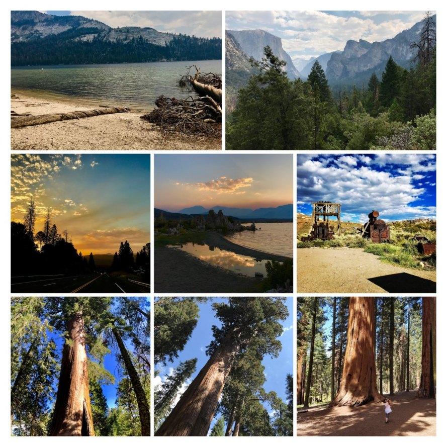 36284-09-2017-08-California