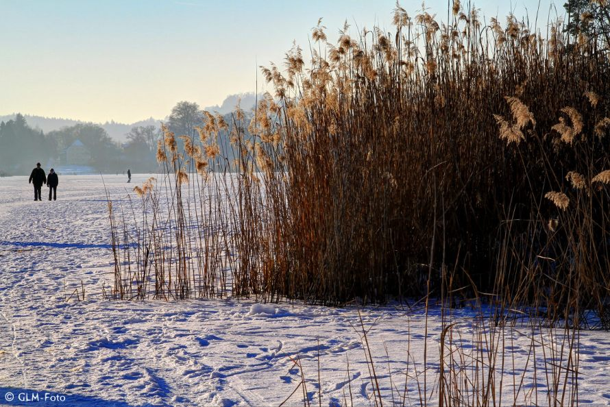 01-2017-01-29-Seeon-frozen_166