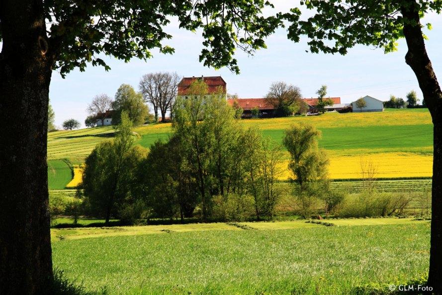 05-2017-05-06-BavarianSpring_422-a