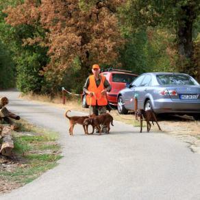 Jäger und Hunde zufrieden