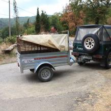 Die müden Hunde werden im Anhänger ins Tal gebracht.